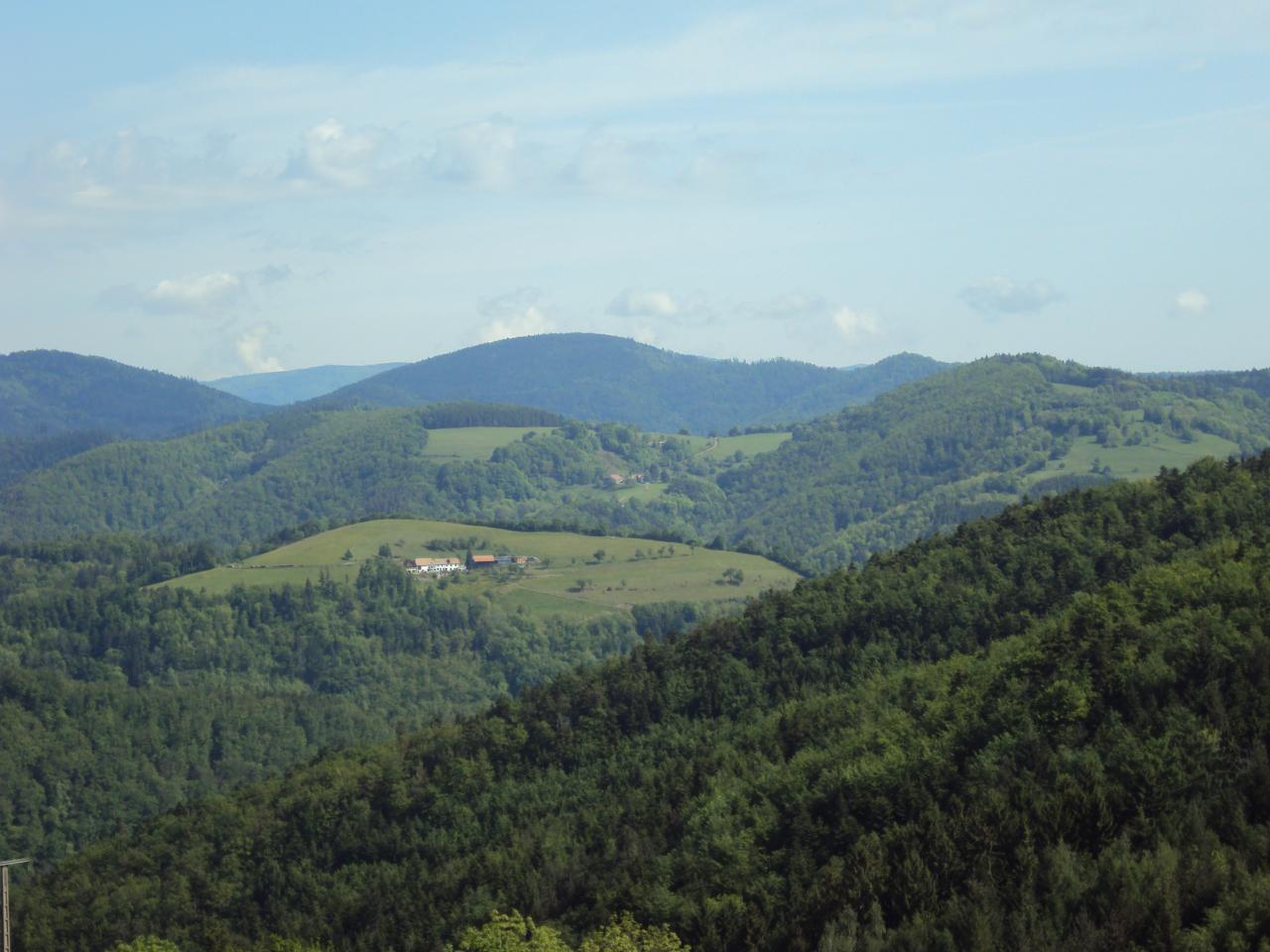 COL DE RIBEAUVILLE